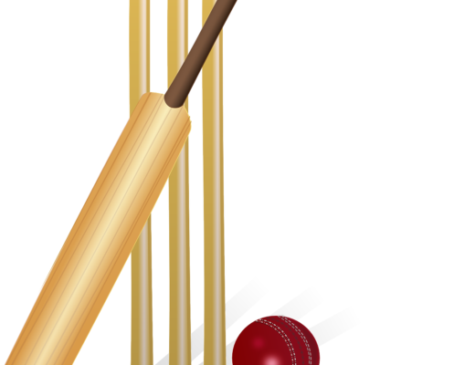 Cricket For all Cricket Lovers