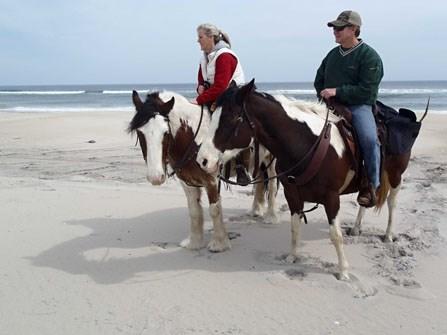 horseback jungle safari
