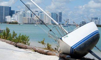 Miami area starts cleanup