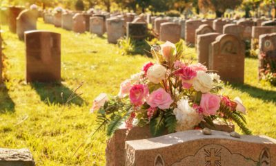 Book different funeral options